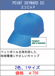 POINT SKYWARD EC エコCAP