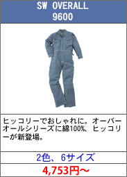 sw_overall_9600