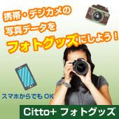 Citto+fフォトグッズ
